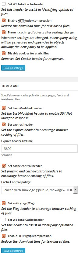 Configure W3 Total Cache plugin: settings for PageSpeed 100